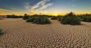 Предсказана глобальная катастрофическая засуха | Nashe.Orbita.co.il