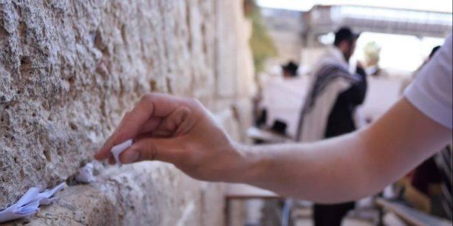 ЕВРЕИ И НЕЕВРЕИ ВО ВСЕМ МИРЕ ОТКЛИКНУЛИСЬ НА ПРИЗЫВ СОХНУТА
