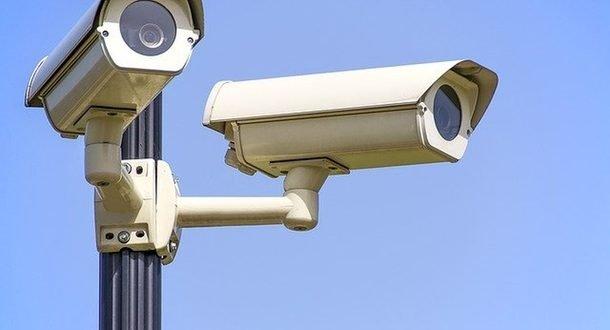 После поджога книг в парке Train Track установят камеры наблюдения