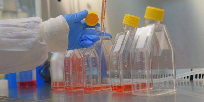 В Израиле делали заборы из горла для проверки на коронавирус палочками для вагинального забора