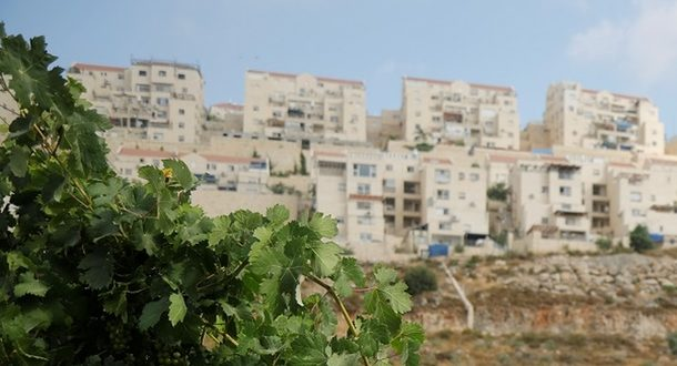 «Из огня в полымя»: рынок недвижимости Израиля в период коронавируса