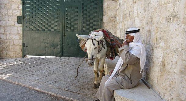 Бедуин признан судом виновным в полигамии