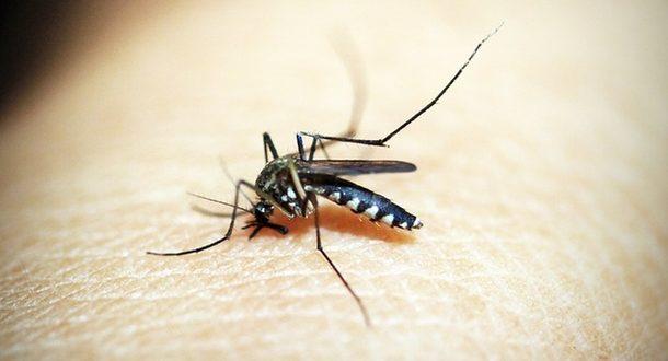 В медцентр Галилеи попал «малярийный» пациент в критическом состоянии