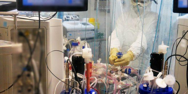 число инфицированных и больных продолжает уменьшаться, 10 заболевших скончалось