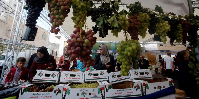 В Израиле подросли цены на фрукты и овощи и упали на вторичное жилье