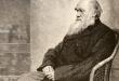 Две рукописи Дарвина пропали из Кембриджского университета, вероятно, еще 20 лет назад
