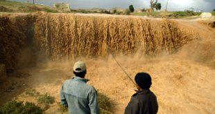Специалисты: Израиль не готов к ежегодным наводнениям в зимний период